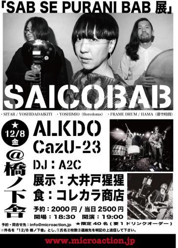 saicobab_center.jpg
